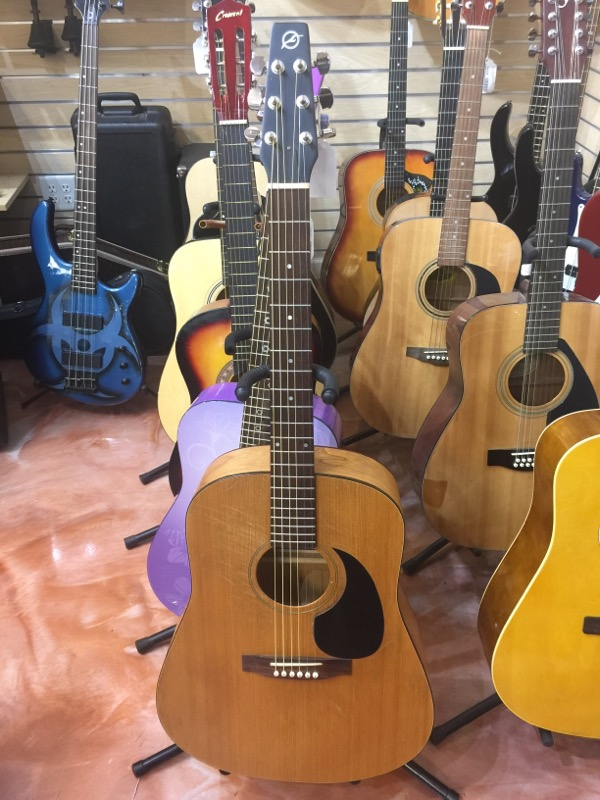 SEAGULL GUITARS Acoustic Guitar Amp D1X