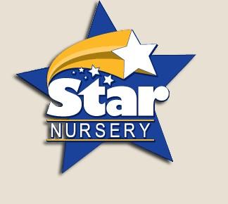 STAR NURSERY