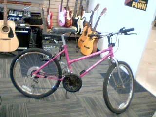 BICYCLE CORPORATION OF AMERCIA Mountain Bicycle ENDURO