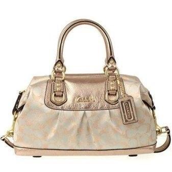 COACH Handbag F15804