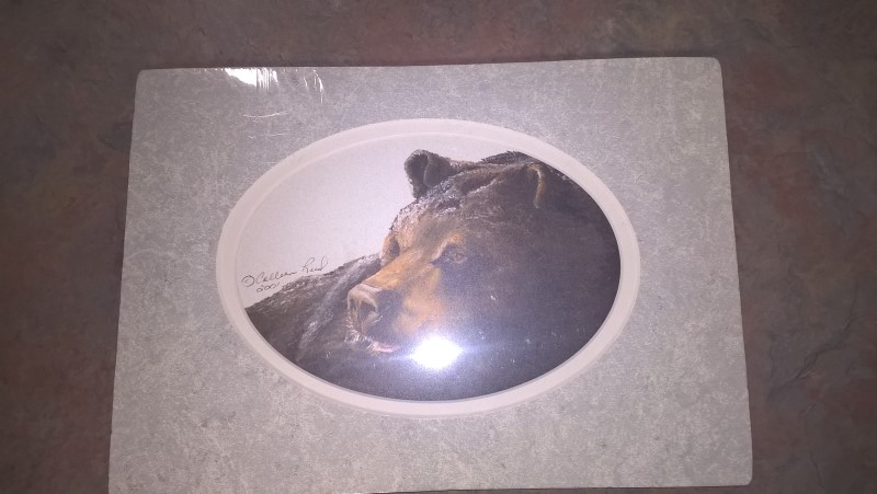 Print BEAR PRINT BY COLLEEN REED:ALASKA