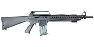 PW ARMS Shotgun PWAR12