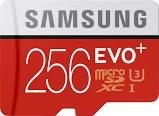 SAMSUNG Computer Accessories 256GB EVO PLUS