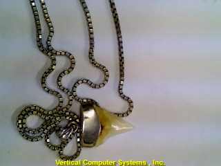 BOXLK,_SHARK_TOOTH CHAIN AND PENDANT STERLING SILVER  PW3449 10.6/SS