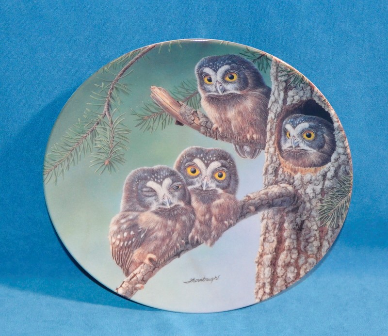 KNOWLES Collectible Plate/Figurine BEGINNING TO EXPLORE: BOREAL OWLS