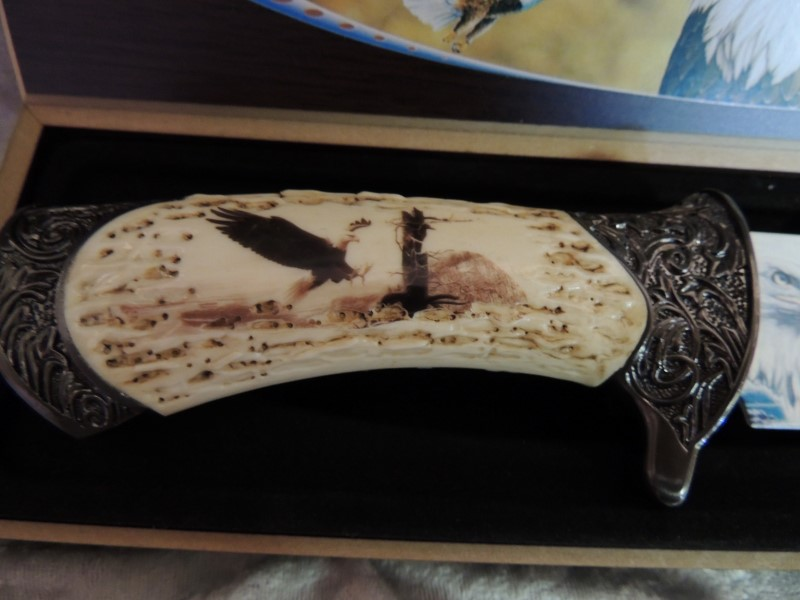 Knife with Painted Eagle Blade and Stag Handle in Box
