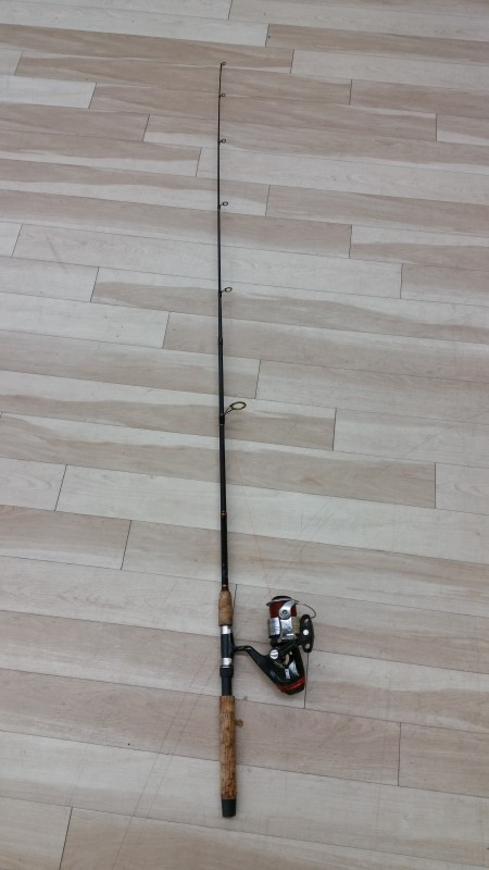 ZEBCO Fishing Pole HAWG SEEKER