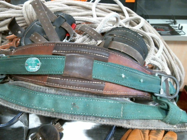 BUCKINGHAM Miscellaneous Tool SAFETY CLIMBING BELT FOR TREES