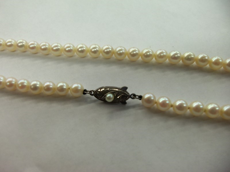 "14.5"" PEARL CHOKER SILVER CLASP (65) 5MM PEARLS WITH NICE LUSTER"