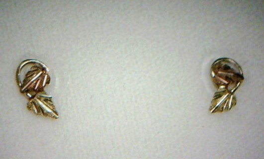 Gold Earrings 10K Yellow Gold 0.33dwt