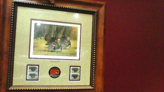 NWTF Photograph Mark Twain Noe Turkey