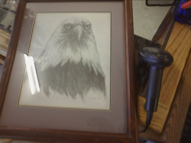 M BABY 1981 EAGLE PRINT WIHT LIGHT GREY MATT AND WOOD FRAME