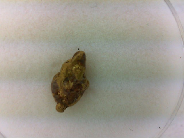 natural placer gold nugget 0.6g