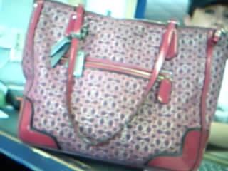 COACH Handbag 10296