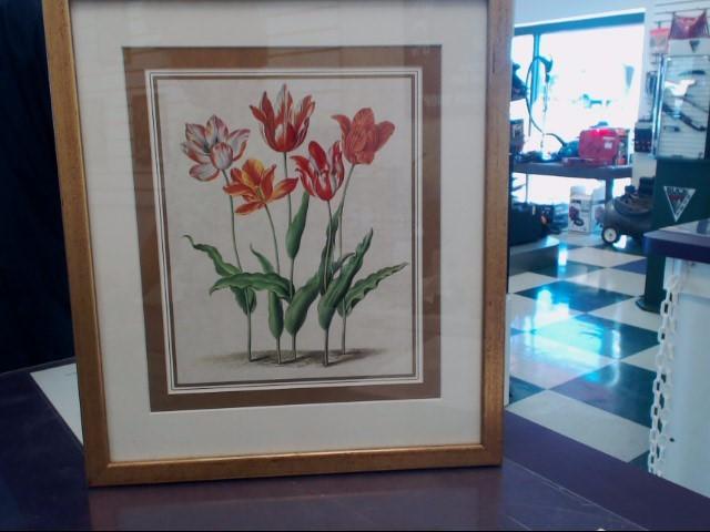 ETHAN ALLEN Print TULIPS FRAMED ART 15X16
