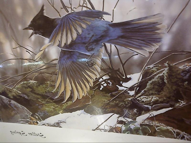"ART PRINT ""STELLAR  SPRING "" BY JANENE GRENDE"