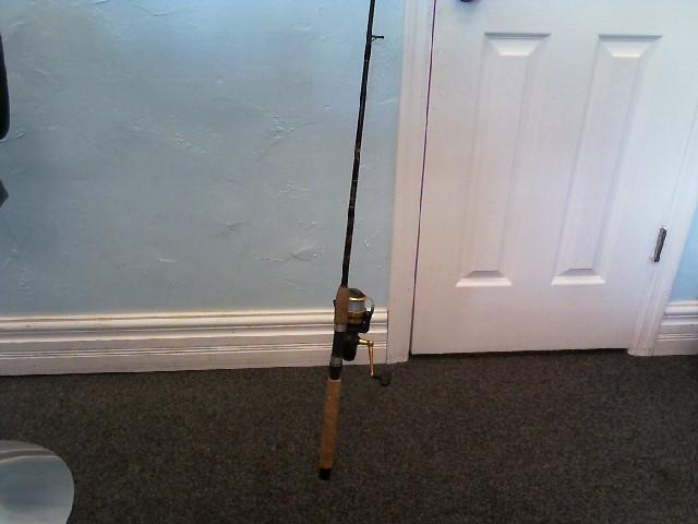 PENN REELS Fishing Reel SLAMMER