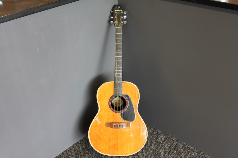 APPLAUSE Acoustic Guitar AA14-1