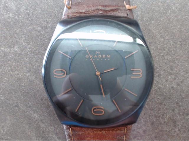 SKAGEN Gent's Wristwatch SKW6040 SKW6040
