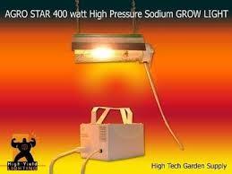 grow-lamp light indoor plants AGROSTAR AS400HPS