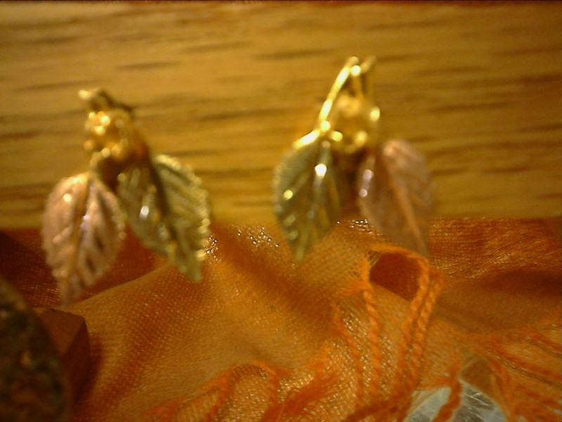 Gold Earrings 10K Tri-color Gold 1.26dwt
