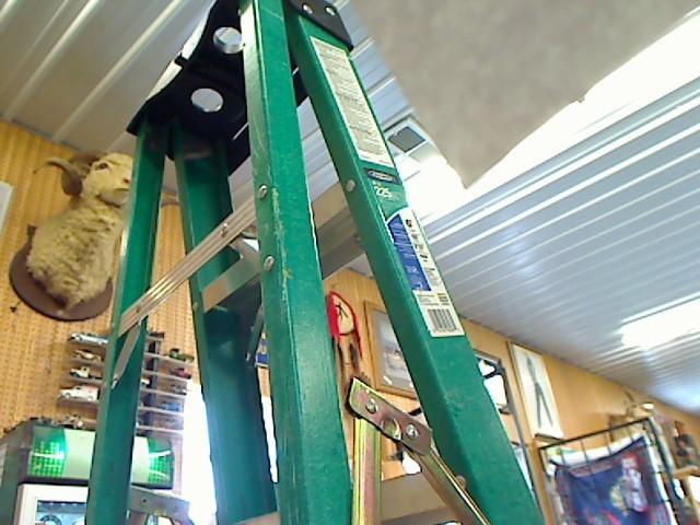 WERNER LADDER Ladder FS206