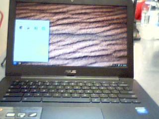 ASUS PC Laptop/Netbook CHROMEBOOK C300