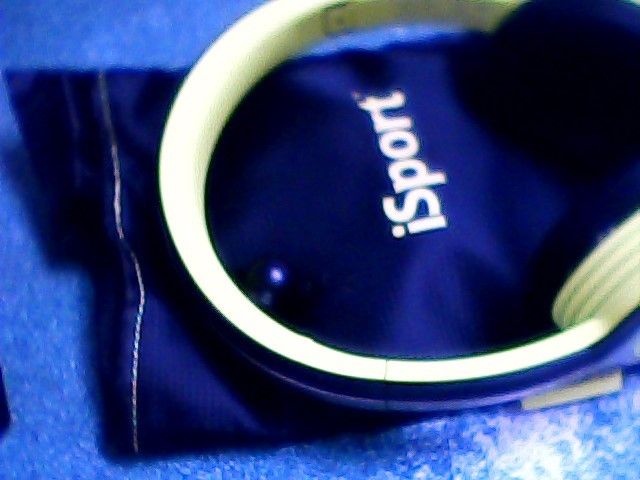 ISPORT Headphones STRIVE HEADPHONES