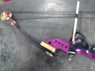 ALPINE WOODWINDS Bow SILVERADO LITE COMPOUND BOW