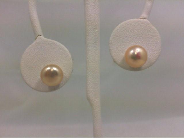 Earrings Silver Stainless 2.7g