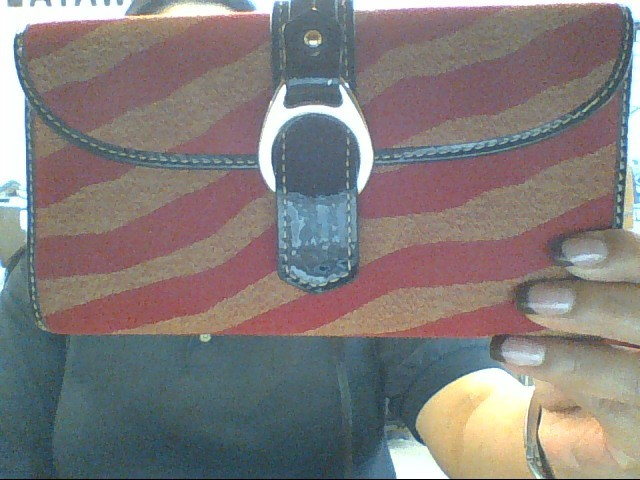 DOONEY & BOURKE Handbag ZEBRA HOBO BAG