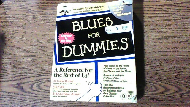 IDG BOOKS Electronic Instrument BLUES FOR DUMMIES
