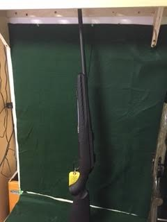 RUGER Rifle AMERICAN (06905)