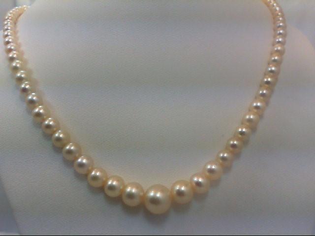 Gold-Misc. 14K White Gold 12.8g