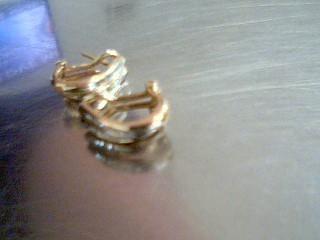Gold-Diamond Earrings 30 Diamonds .30 Carat T.W. 10K Yellow Gold 4g