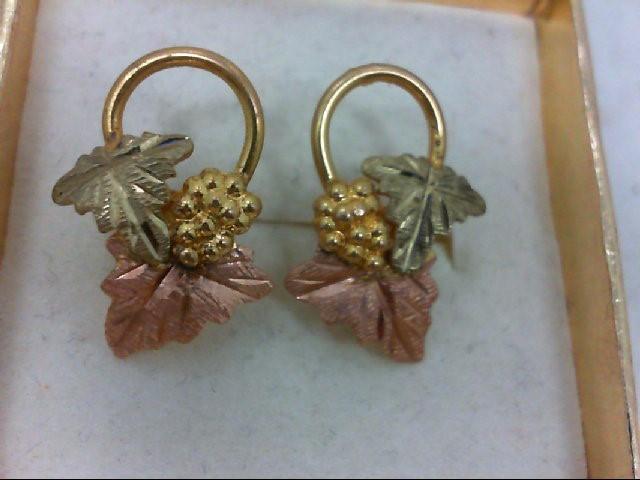Gold Earrings 10K 2 Tone Gold 2.4g