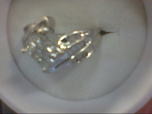 Lady's Diamond Cluster Ring 49 Diamonds .49 Carat T.W. 10K White Gold 5.3g