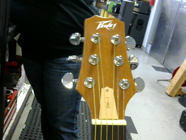 PEAVEY Acoustic Guitar DW-1