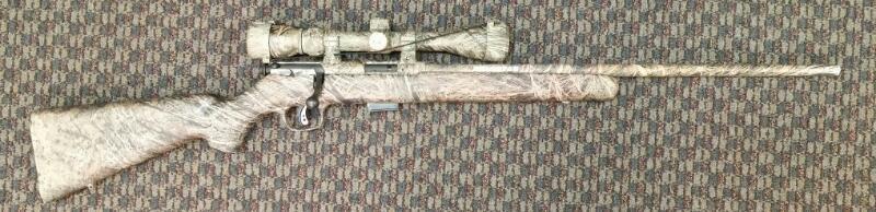 SAVAGE ARMS M93, .17HMR W/ SCOPE