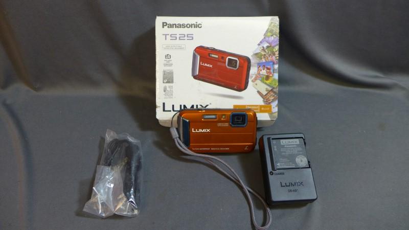 PANASONIC TS25