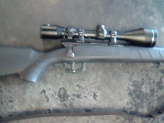 SAVAGE ARMS Rifle BMAG17