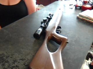 BENJAMIN SHERIDAN Air Gun/Pellet Gun/BB Gun TITAN GP