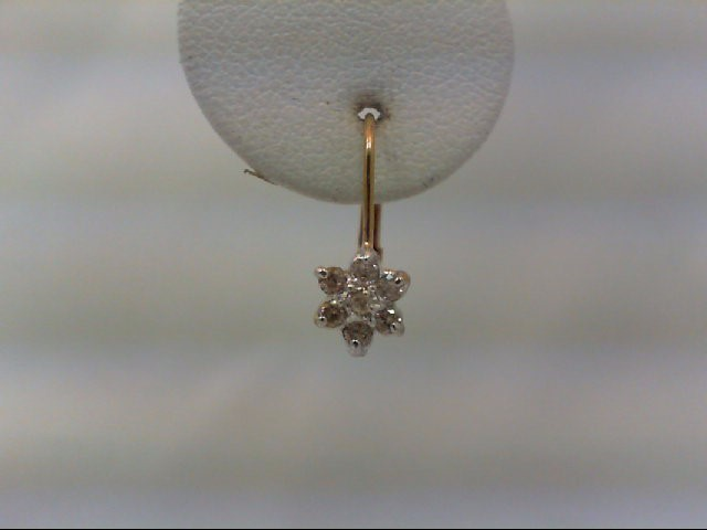 Gold-Diamond Earrings 14 Diamonds .26 Carat T.W. 10K Yellow Gold 1g