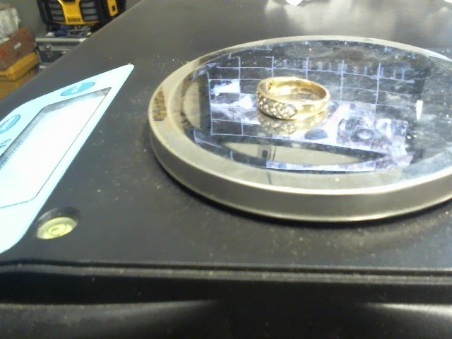 Lady's Diamond Wedding Band 17 Diamonds .17 Carat T.W. 10K Yellow Gold 3.34g