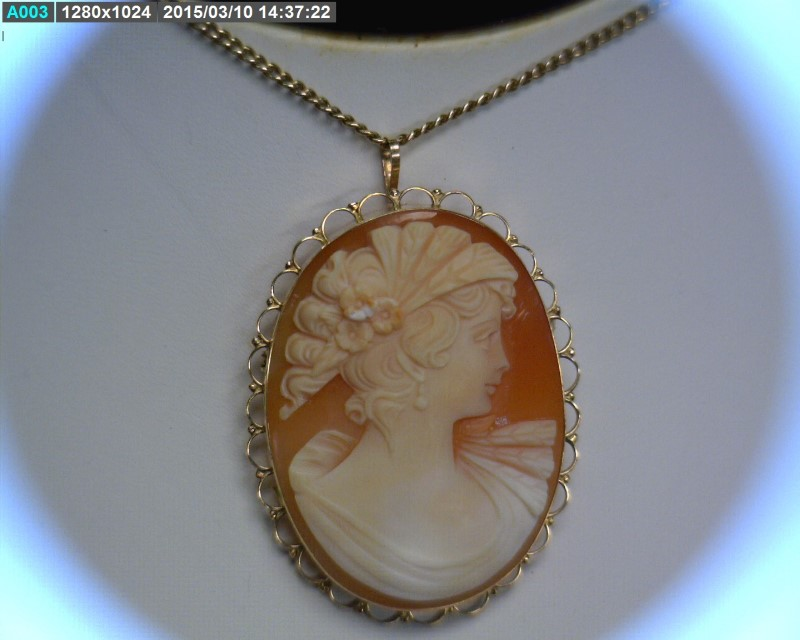 "20"" Cameo Stone Necklace 14K Yellow Gold 9.42dwt"