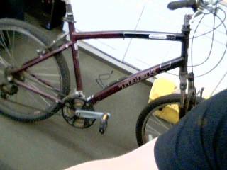 TREK Mountain Bicycle NAVIGATOR 2.0