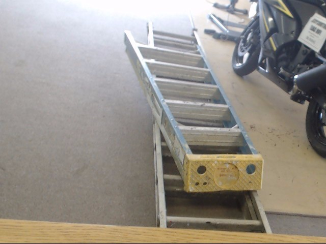 WERNER Ladder 6006