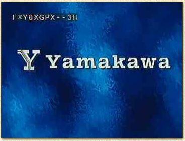 YAMAKAWA ELECTRONICS