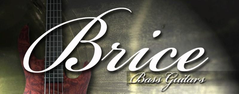 BRICE GUITAR