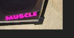 MUSCLE AMPLIFIER